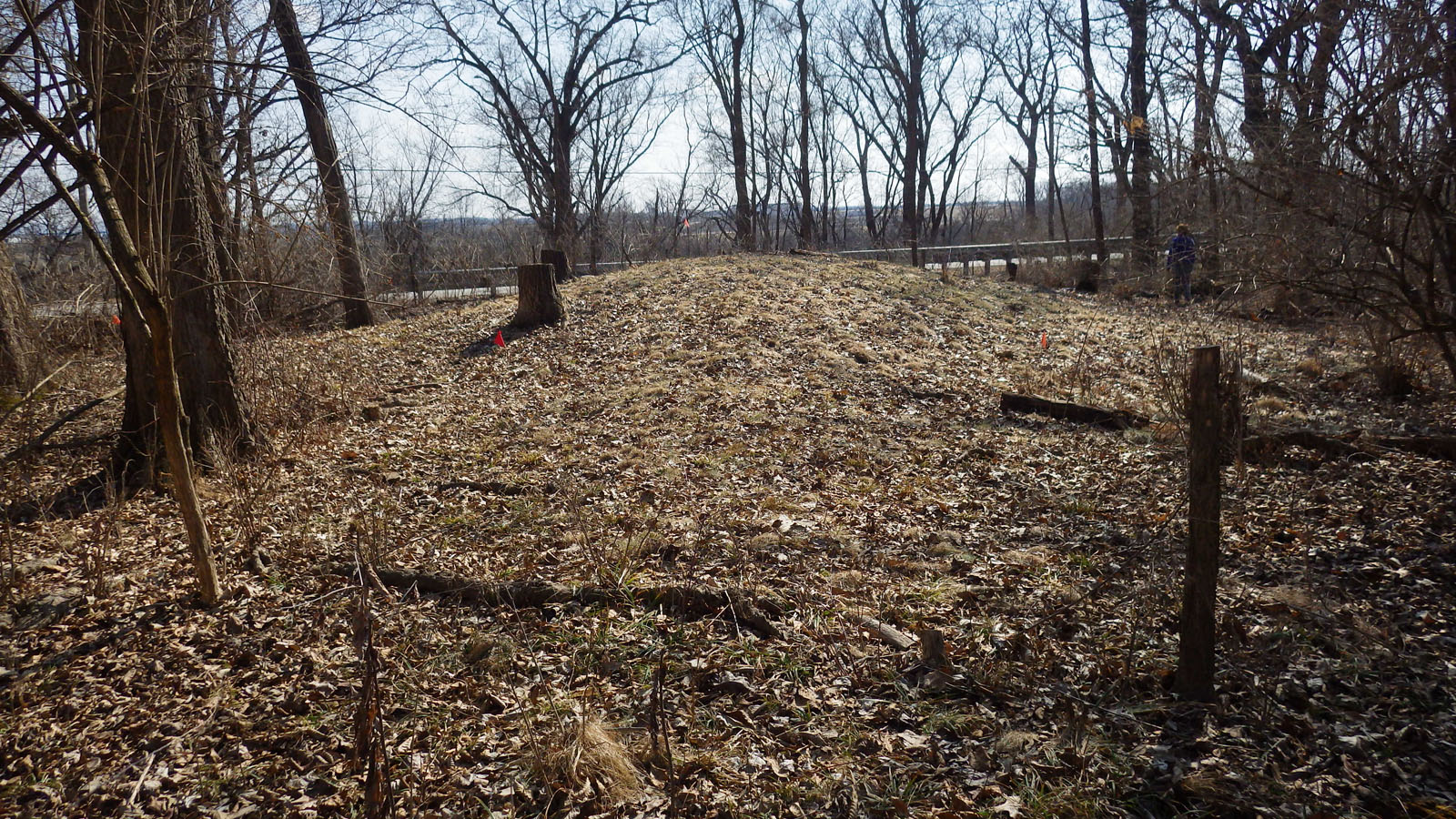 11WO3 panther mound looking SE to IL Rte 2 and Rock River