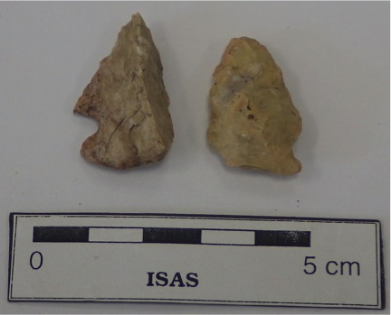 Early Archaic Thebes Point (left) and Middle Archaic Raddatz Point (right) recovered from 11WI662