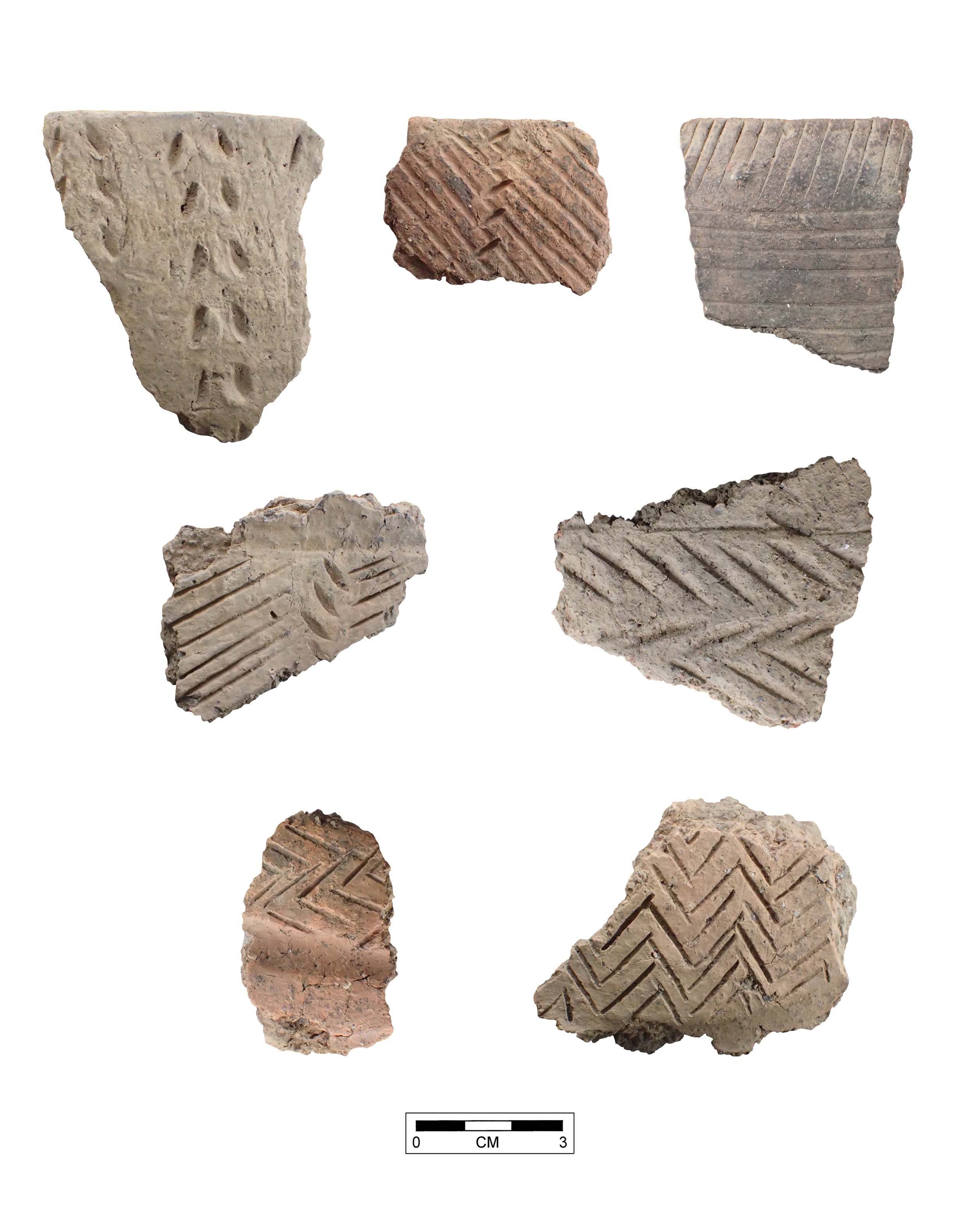 Middle Woodland Sherds (Henderson Co)