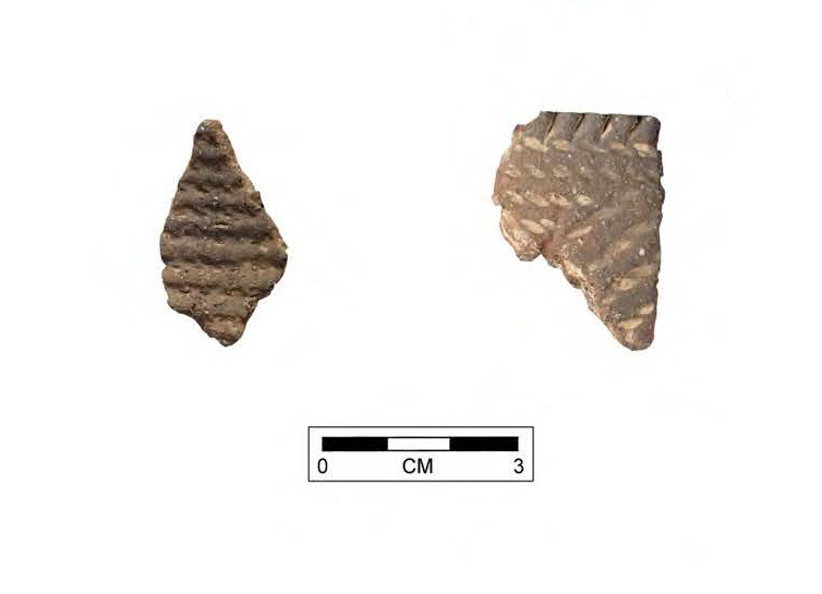 Cord-Impressed Sherds from the Van Fleet Site