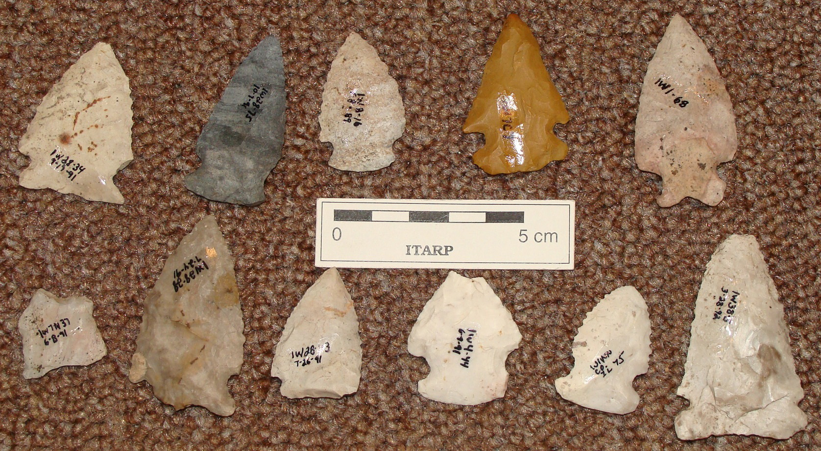 Early-Mid Archaic points