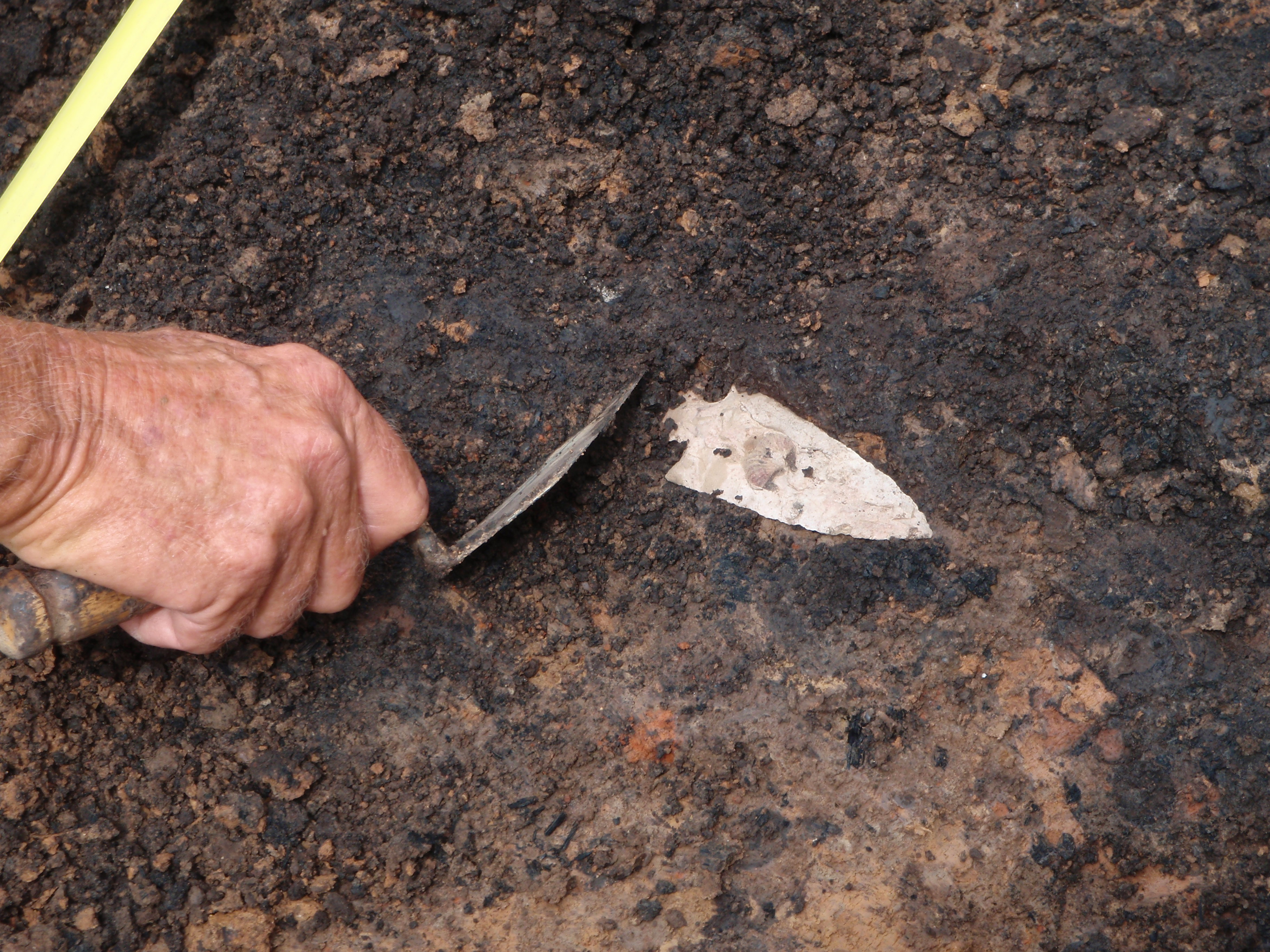 Uncovering a chert point